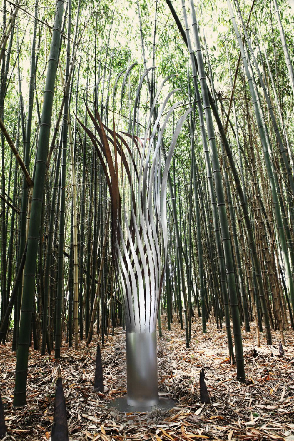 KOICEA Stainless Steel Sprout in a private giant bamboo forest